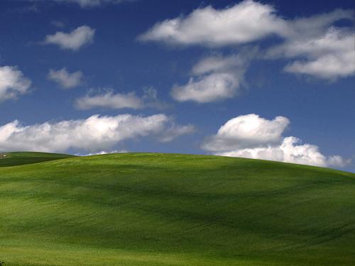 Imagen Windows Praderas