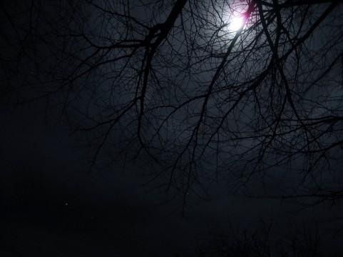 満月の下で