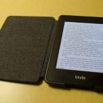 電子書籍の普及を妨げるもうひとつの欠点