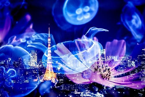 クラゲと東京タワー